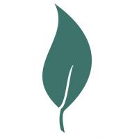 Site Favicon Logo